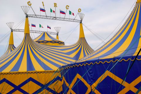 Circus Workshop Hire